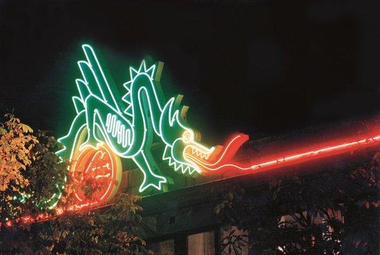 draken neonskylt focus neon